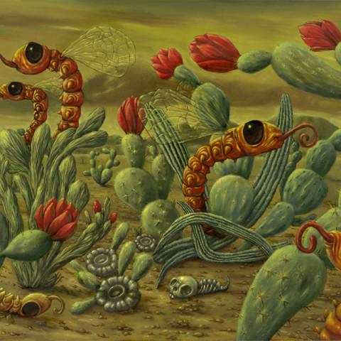 Cactusparadijs